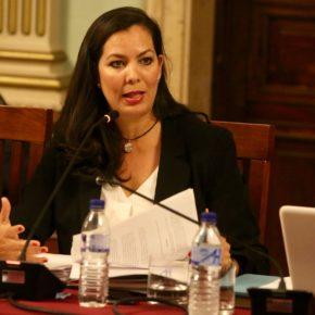 Ciudadanos (Cs) preguntará en el Pleno por los cortes de luz en las Colonias y El Carmen