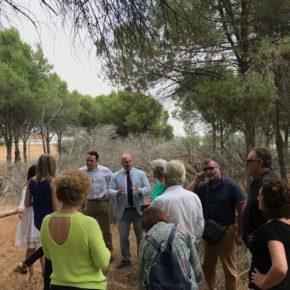 Ciudadanos (Cs) lleva al Parlamento la problemática del barrenillo rojo en Huelva