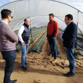 """Carlos Hermoso: """"El desdoble del túnel de San Silvestre es una absoluta prioridad para Ciudadanos"""""""
