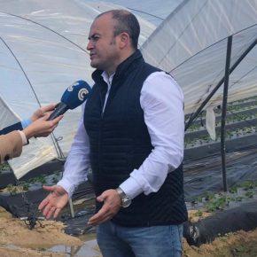 Ciudadanos exige a Sánchez que garantice el mantenimiento de la actividad agraria en los campos onubenses