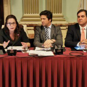 Ciudadanos pide a Cruz un plan de limpieza que ayude a la erradicación de la plaga de mosquitos en la capital